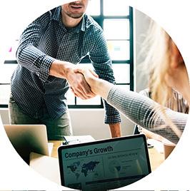 Professional Consulting - Alfabit