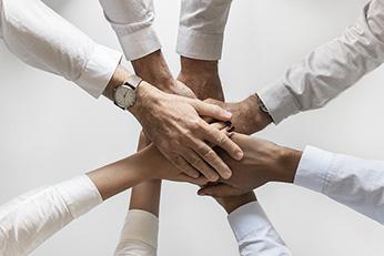 Teamwork - AlfaBit